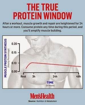 重訓後攝取蛋白質的時間