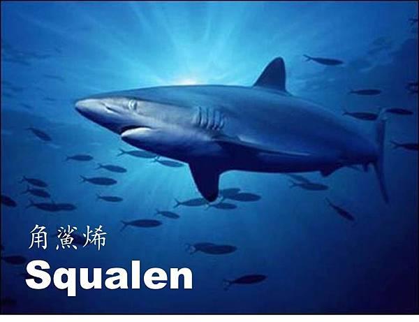 角鯊烯.jpg2