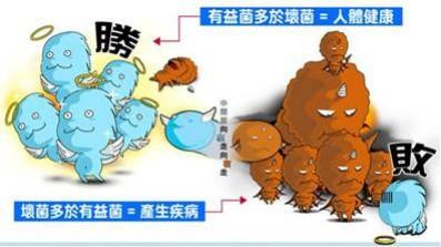 益生菌VS壞菌