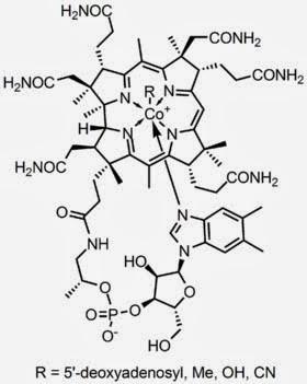 維生素B12結構