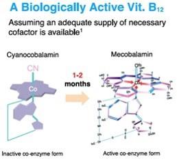 活性B12的轉換