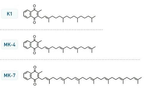 維生素K的結構