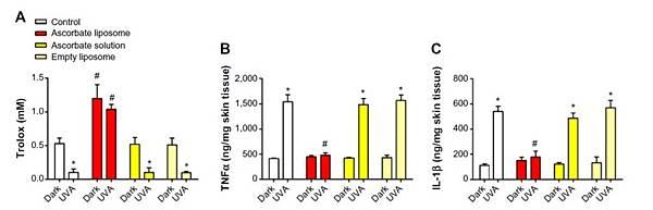 Liposome Vit C抗發炎抗氧化