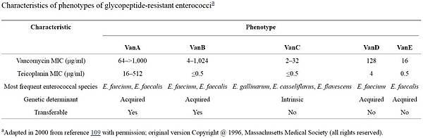 vancomycin抗菌素