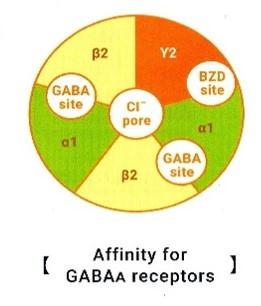 Affinity for GABA a receptor