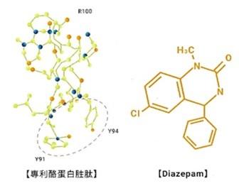 專利酪蛋白胜肽的堂結構