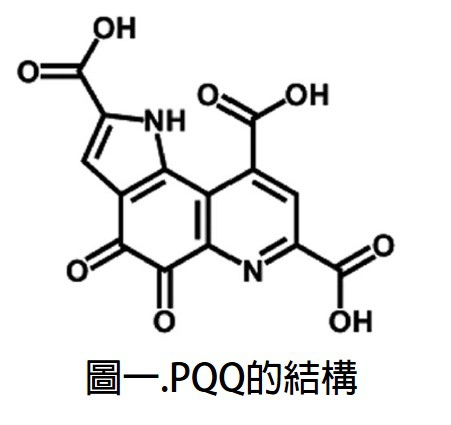 PQQ的結構