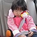 上車就睡著了!
