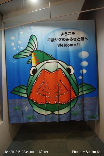 D1-03.千歲.鮭魚的故鄉 (13).jpg