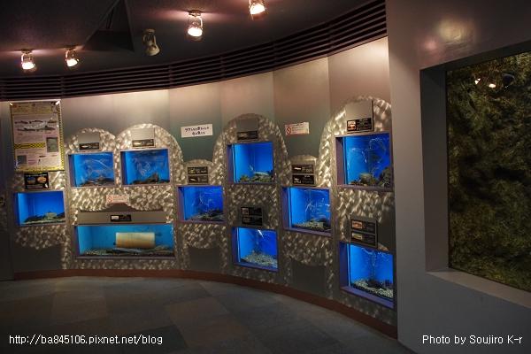 D1-03.千歲.鮭魚的故鄉 (25).jpg