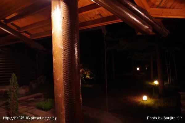 D1-07.NIDOM.夜景.jpg