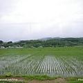D3-03.前往富田農場 (10).jpg