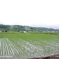 D3-03.前往富田農場 (11).jpg