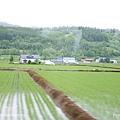 D3-03.前往富田農場 (12).jpg