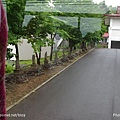 D3-03.前往富田農場 (16).jpg