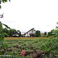 D3-04.富田農場 (14).jpg