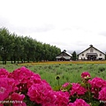 D3-04.富田農場 (20).jpg