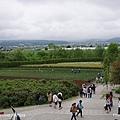 D3-04.富田農場 (38).jpg