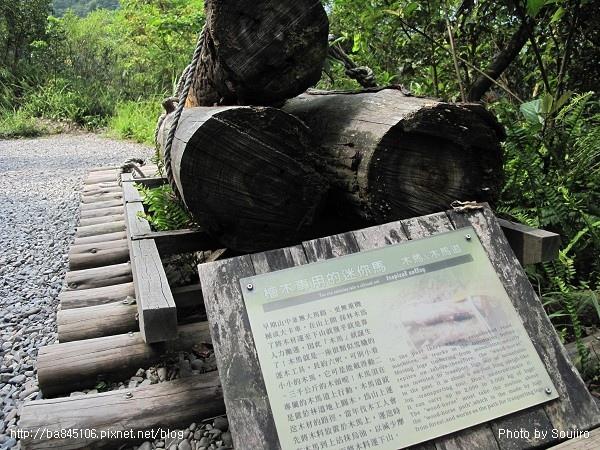 D1-06林美石盤步道 (11).jpg