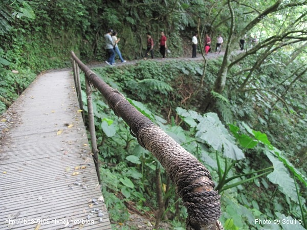 D1-06林美石盤步道 (16).jpg