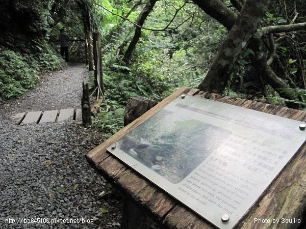 D1-06林美石盤步道 (19).jpg