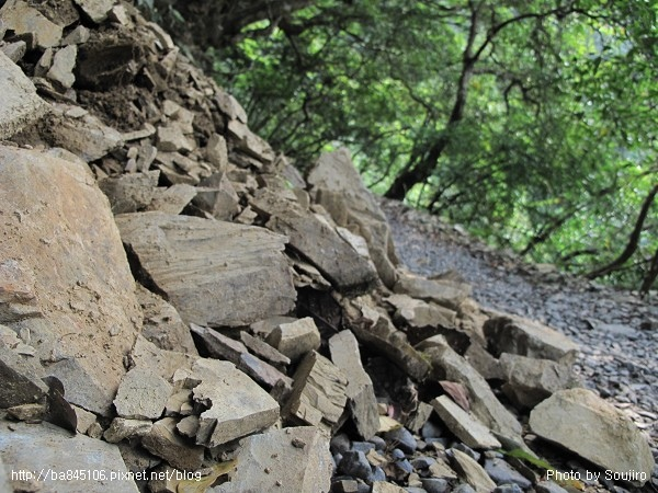 D1-06林美石盤步道 (50).jpg
