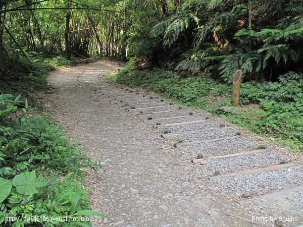 D1-06林美石盤步道 (60).jpg