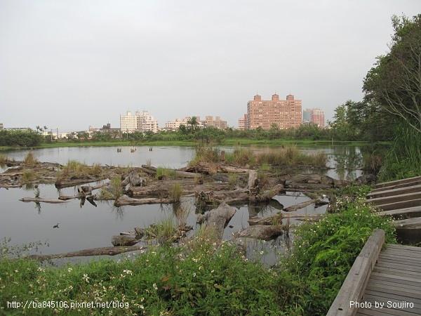 D1-08羅東林業文化園區 (18).jpg