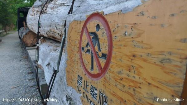 羅東林業文化園區.補充 (12).jpg