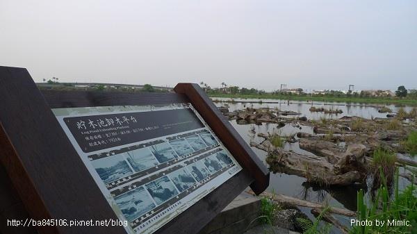 羅東林業文化園區.補充 (13).jpg