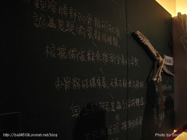 100117-2.中正紀念堂.世界恐龍展 (40).jpg