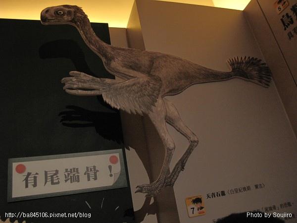 100117-2.中正紀念堂.世界恐龍展 (43).jpg