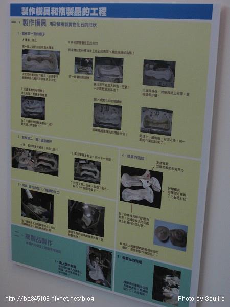 100117-2.中正紀念堂.世界恐龍展 (51).jpg