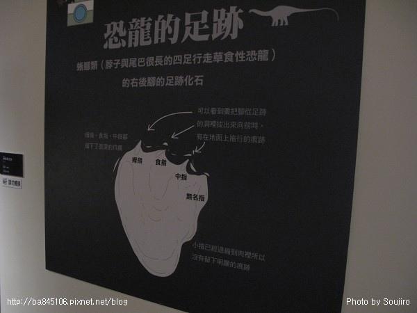 100117-2.中正紀念堂.國際恐龍展 (105).jpg