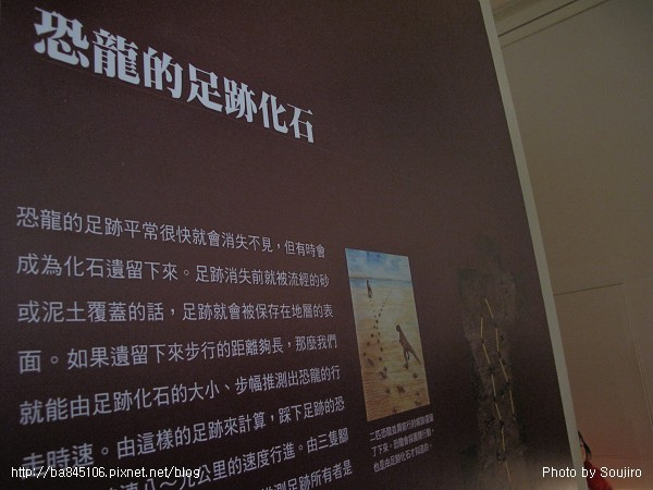 100117-2.中正紀念堂.國際恐龍展 (106).jpg