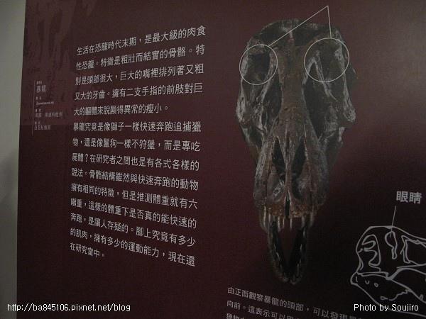 100117-2.中正紀念堂.國際恐龍展 (108).jpg