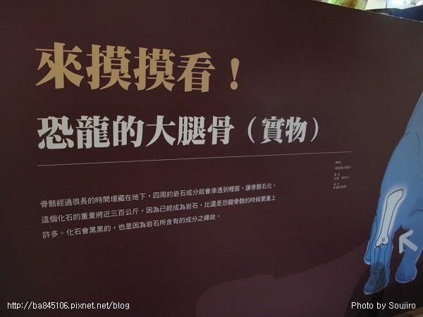 100117-2.中正紀念堂.國際恐龍展 (117).jpg