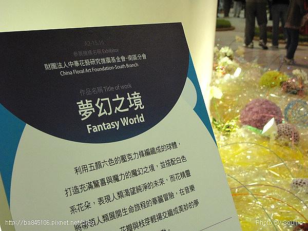 101205.2010台北花博-10.園山.爭豔館 (7).jpg