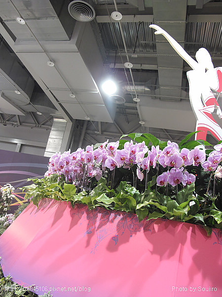 101204.2010台北花博-3.圓山爭豔館 (18).jpg