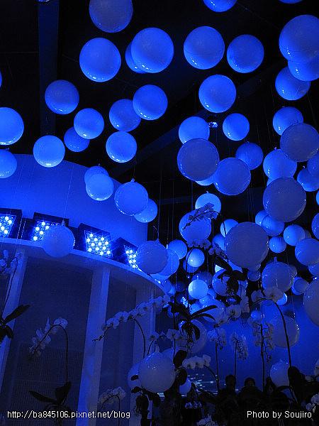 101204.2010台北花博-3.圓山爭豔館 (37).jpg