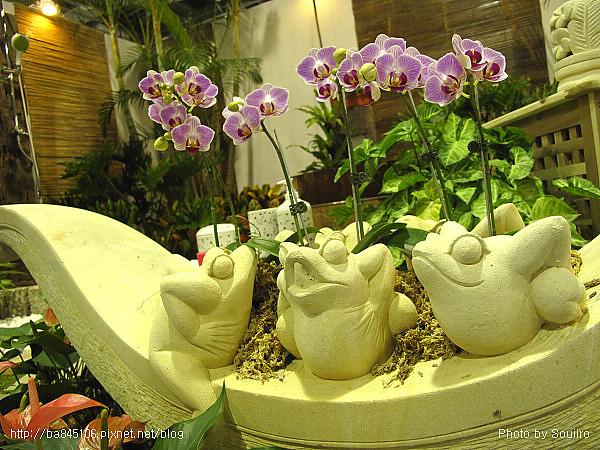 101205.2010台北花博-10.園山.爭豔館 (32).jpg