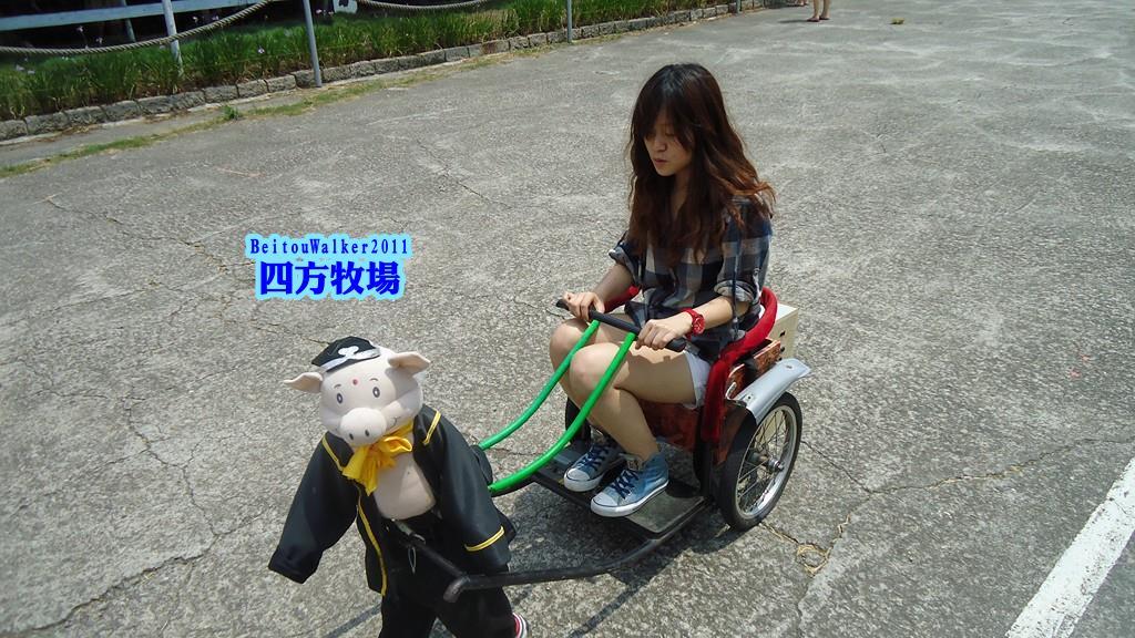 竹南_四方牧場_2011