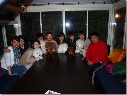 比熊犬~有朋自遠方來(屋頂上小聚)!! 15