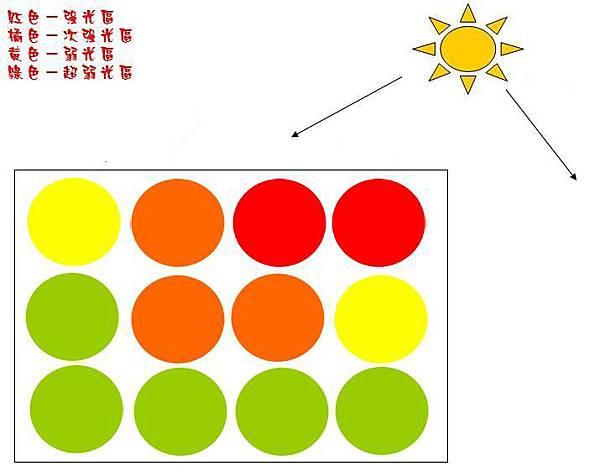 日曬程度-1.JPG