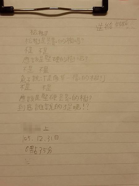 20161231_松樹