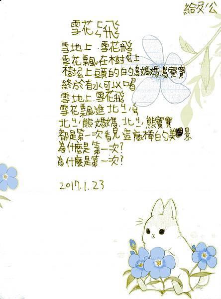 20170123_雪花紛飛