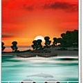 dolphin-island background4