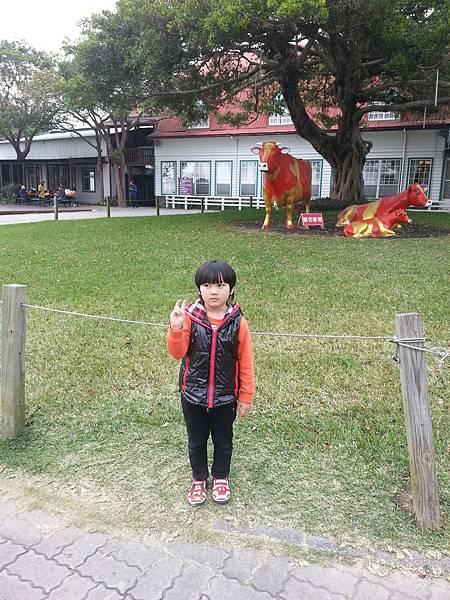 20140223_160321_5.jpg