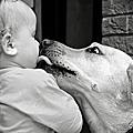 小孩與狗狗【得獎圖片】