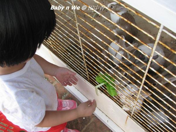 Baby n We @ 田中香